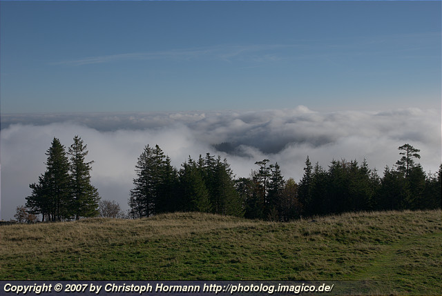 image 3: View above the layer of clouds on an early October morning in the Black Forest.