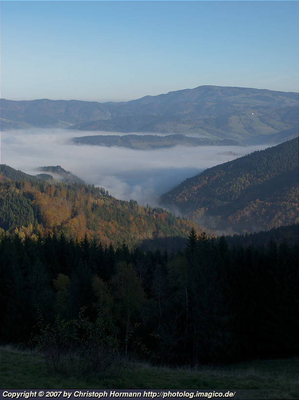 image 9: Fall colors and fog in the morning