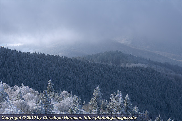 image 52: Black Forest winter as seen from the Schauinsland
