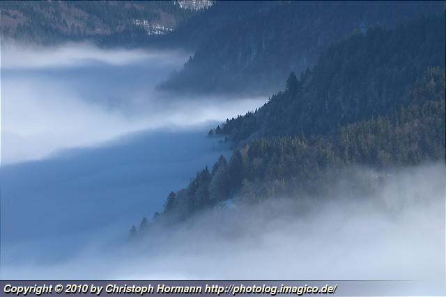 image 67: Above the fog - St Wilhelm Valley from the Schauinsland